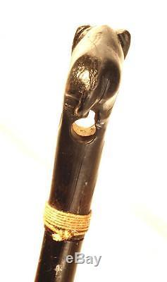 Antique Native American Buffalo / Bison Horn Quirt, Riding Crop or Whip old west